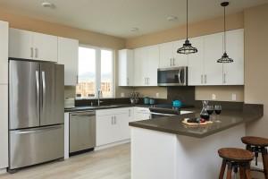 20-491-LA-Urban-Homes-River-Park8893